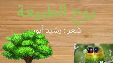 Photo of حل درس روح الطبيعة لغة عربية صف ثامن فصل ثاني