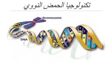 Photo of صف ثاني عشر متقدم فصل ثاني تلخيص أحياء علم الوراثة والتقنيات