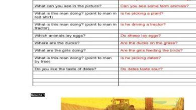 Photo of صف ثاني فصل ثاني لغة إنجليزية نموذج امتحان التحدث