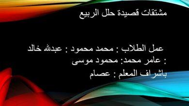 Photo of صف عاشر فصل ثاني لغة عربية مشتقات حلل الربيع