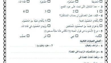 Photo of أسئلة نص استماع العصفوران وحبة القمح لغة عربية صف رابع فصل أول