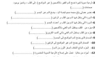 Photo of اختبار تجريبي قصير يتبعه الحل علوم صف ثامن فصل ثاني