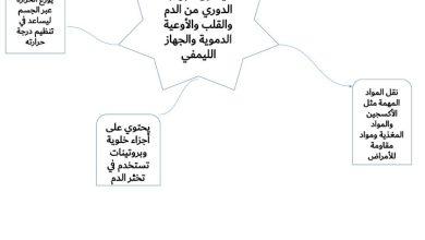 Photo of صف تاسع متقدم فصل ثاني احياء مراجعة الجهاز الدوري
