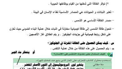 Photo of صف ثامن فصل ثاني علوم تلخيص الجهاز التنفسي