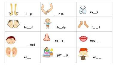 Photo of صف أول فصل ثاني ورق عمل لغة إنجليزية (تهجئة الكلمات) الوحدات 5 – 6 – 7