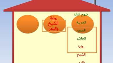 Photo of اجابة درس رواية الشيخ والبحر لمادة اللغة العربية الصف العاشر
