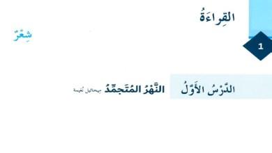 Photo of صور حل درس النهر المتجمد لغة عربية الصف ثامن فصل ثالث