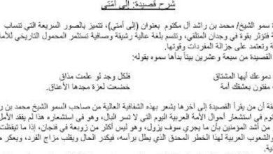 Photo of شرح قصيدة إلى أمتي لغة عربية صف حادي عشر فصل ثالث