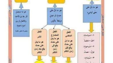 Photo of ملخص النحو لغة عربية صف ثاني فصل ثالث
