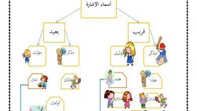 Photo of ورقة عمل لغة عربية صف أول فصل ثالث