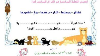 Photo of ورقة عمل درس الرحمة بالحيوان تربية إسلامية صف أول فصل ثاني