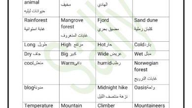 Photo of صف رابع فصل ثالث إنجليزي مفردات وقواعد وبرجرافات الوحدة 12