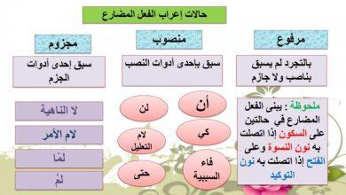 Photo of صف سابع فصل ثالث اللغة العربية أجوبة درس جزم الفعل المضارع