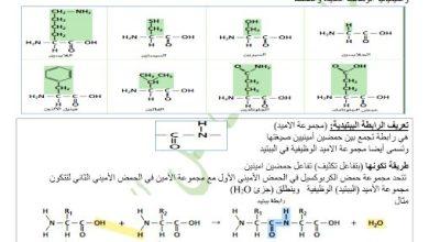 Photo of ملخص وحل درس البروتينات والكربوهيدرات كيمياء صف ثاني عشر متقدم فصل ثالث