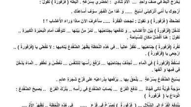 Photo of تدريبات على حل أسئلة النصوص لغة عربية صف ثالث فصل ثالث