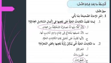 Photo of حل درس أصدقاء وأعداء لا نراهم لغة عربية الصف السادس الفصل الثالث