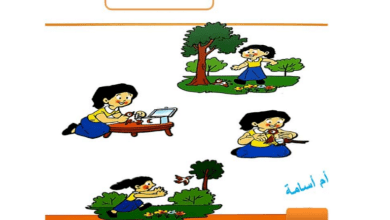 Photo of تدريب كتابة قصة مصورة لغة عربية صف ثاني فصل ثاني