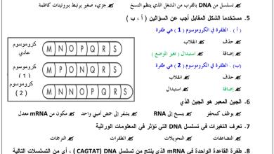 Photo of صف ثاني عشر متقدم فصل ثاني أحياء ورق عمل الوراثة الجزيئية