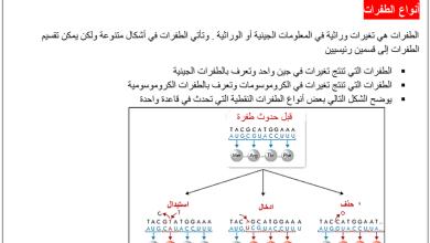 Photo of تلخيص الطفرات و الجينات أحياء صف ثاني عشر فصل ثاني