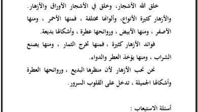 Photo of صف رابع فصل ثاني لغة عربية مراجعة الجملة الاسمية والفعلية