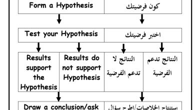 Photo of صف رابع فصل أول علوم مراجعة باللغتين عربي ومنهج