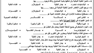 Photo of صف رابع فصل أول علوم أوراق عمل مراجعة