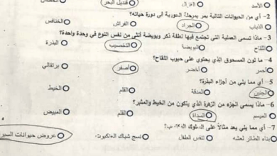 Photo of صف خامس علوم امتحان نهاية الفصل الأول 2016 محلول