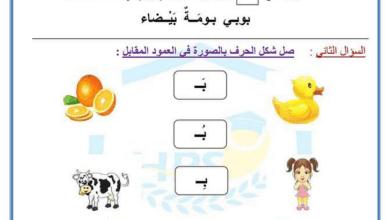 Photo of أول لغة عربية ورق عمل الألف والباء