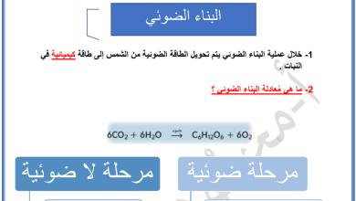 Photo of ملخص البناء الضوئي أحياء صف عاشر فصل أول