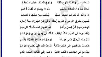 Photo of اختيار من متعدد على قدر أهل العزم لغة عربية صف ثاني عشر فصل أول