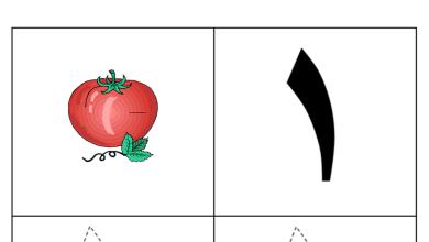 Photo of أوراق عمل (الأرقام) رياضيات للصف الأول