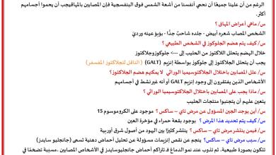 Photo of اسئلة تدريبية على الأنماط الأساسية لوراثة الإنسان أحياء فصل أول صف ثاني عشر متقدم