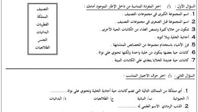 Photo of ورقة عمل عن التصنيف علوم فصل أول صف رابع