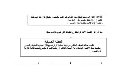 Photo of التاء المربوطة لغة عربية فصل ثاني صف ثاني