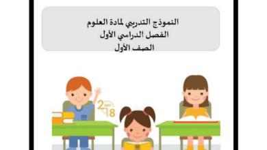 Photo of النموذج الوزاري التدريبي لمادة العلوم الفصل الدراسي الأول للصف الأول