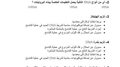 Photo of مراجعة علم الوراثة الجزيئية أحياء صف ثاني عشر
