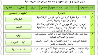 Photo of ورقة عمل درس النباتات حولية في دولة الإمارات مع الإجابات اجتماعيات للصف السادس فصل ثالث