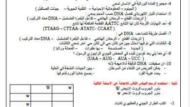 Photo of النموذج التدريبي لامتحان نهاية العام أحياء صف ثاني عشر عام فصل ثالث