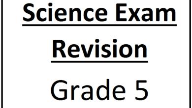 Photo of مراجعة لامتحان نهاية العام الفصل الثاني والثالث علوم منهج إنجليزي صف خامس