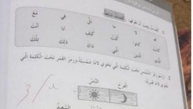 Photo of حل درس ياسمين وزهرة دوار الشمس لغة عربية صف رابع