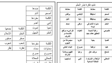 Photo of شرح قصيدة فكرة تبذرُ الحلم لغة عربية صف رابع فصل ثاني