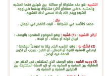 Photo of شرح أنواع التشبيه لغة عربية صف ثامن فصل ثاني