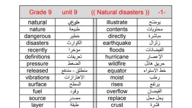 Photo of مفردات الوحدة التاسعة لغة إنجليزية صف تاسع فصل ثاني