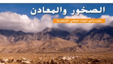 Photo of حل درس الصخور والمعادن علوم للصف الثاني فصل ثاني