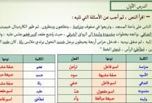 Photo of حل تدريبات متنوعة النحو لغة عربي حادي عشر