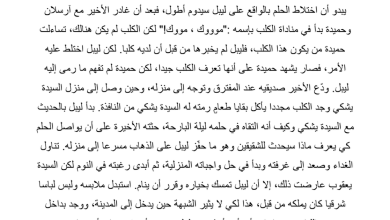 Photo of تلخيص درس عصر قصير رواية أحلام ليبل السعيدة
