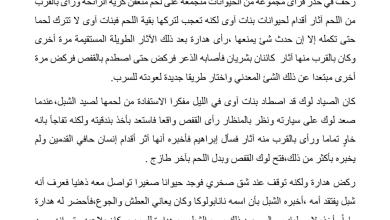 Photo of تلخيص الفصل العشرين نانابولوكو رواية الولد الذي عاش مع النعام صف سابع