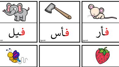 Photo of ورقة عمل حرف الفاء لغة عربية صف أول فصل ثالث