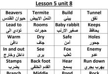 Photo of حل الدرس الخامس من الوحدة الثامنة لغة إنجليزية صف ثالث فصل ثالث