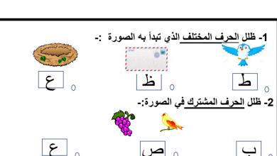 Photo of ورقة عمل حرف العين لغة عربية صف أول فصل ثاني